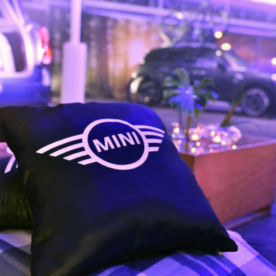 Its all in the detail MINI scatter cushions